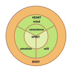 The parts of your heart--mind, emotion, will & conscience