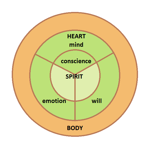 What Is Your Heart According To The Bible And How Can You Exercise It