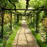 Garden walkway by Terry Ballard at morguefile
