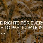 10 Divine Rights for Every Believer to Participate in