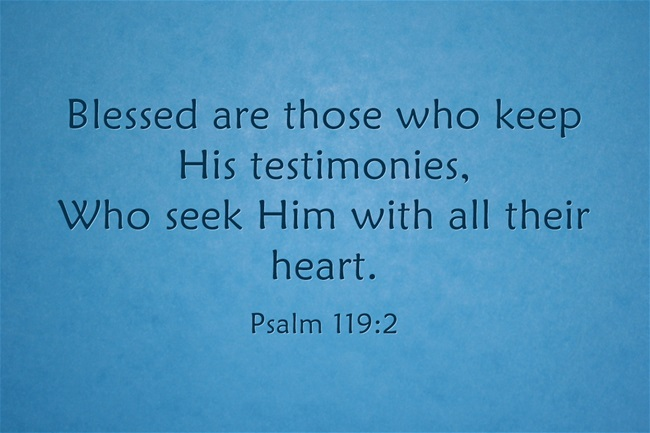 Blessed are those who keep His testimonies